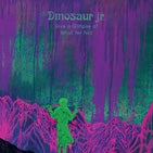 Dinosaur Jr TN.jpg
